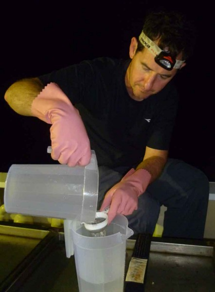 Invertebrate expert Stephen sieves water for plankton