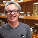 Dr Tom Trnski, Head of Natural Science and Curator of Fishes, Auckland Museum